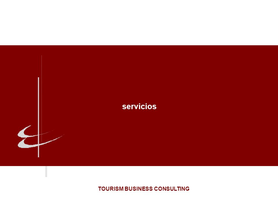 servicios TOURISM BUSINESS CONSULTING