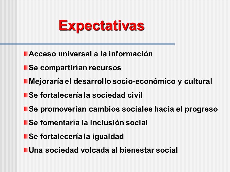 Expectativas Acceso universal a la información Se compartirían recursos Mejoraría el desarrollo socio-económico y cultural Se fortalecería la sociedad civil Se promoverían cambios sociales hacia el progreso Se fomentaría la inclusión social Se fortalecería la igualdad Una sociedad volcada al bienestar social