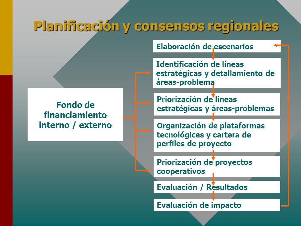 Planificación y consensos regionales Identificación de líneas estratégicas y detallamiento de áreas-problema Priorización de proyectos cooperativos Evaluación de impacto Elaboración de escenarios Fondo de financiamiento interno / externo Evaluación / Resultados Priorización de líneas estratégicas y áreas-problemas Organización de plataformas tecnológicas y cartera de perfiles de proyecto