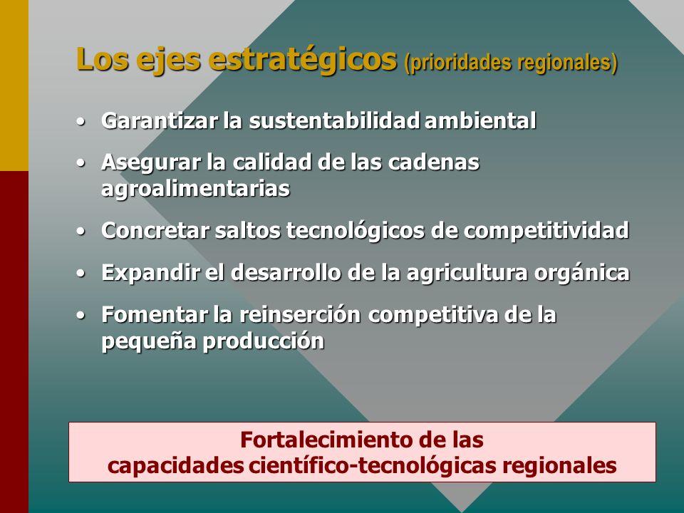 Los ejes estratégicos (prioridades regionales) Garantizar la sustentabilidad ambientalGarantizar la sustentabilidad ambiental Asegurar la calidad de las cadenas agroalimentariasAsegurar la calidad de las cadenas agroalimentarias Concretar saltos tecnológicos de competitividadConcretar saltos tecnológicos de competitividad Expandir el desarrollo de la agricultura orgánicaExpandir el desarrollo de la agricultura orgánica Fomentar la reinserción competitiva de la pequeña producciónFomentar la reinserción competitiva de la pequeña producción Fortalecimiento de las capacidades científico-tecnológicas regionales