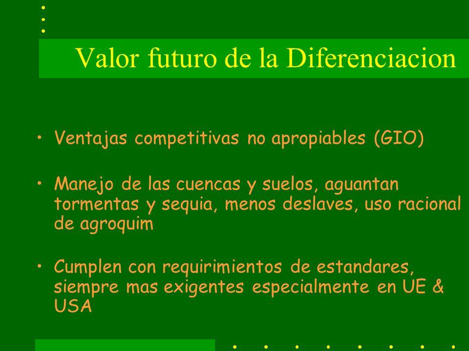 Valor futuro de la Diferenciacion Ventajas competitivas no apropiables (GIO) Manejo de las cuencas y suelos, aguantan tormentas y sequia, menos deslaves, uso racional de agroquim Cumplen con requirimientos de estandares, siempre mas exigentes especialmente en UE & USA