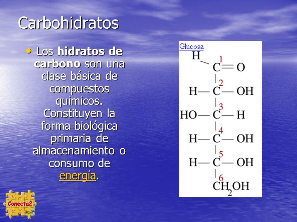 Carbohidratos Los hidratos de carbono son una clase básica de compuestos quimicos.