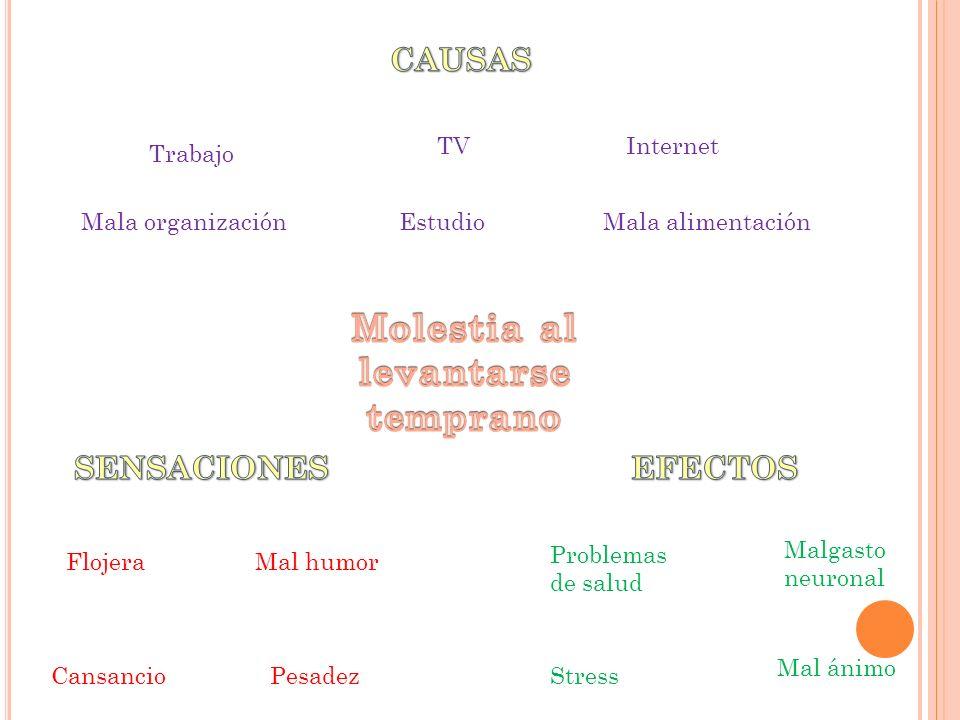 Malgasto neuronal Trabajo EstudioMala organizaciónMala alimentación TVInternet Stress Mal ánimo Problemas de salud Cansancio Flojera Pesadez Mal humor