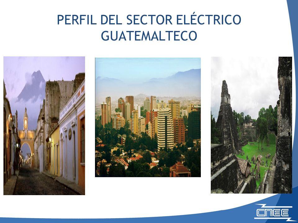 MERCADO MAYORISTA DE ELECTRICIDAD Generación por tipo de combustible 2010