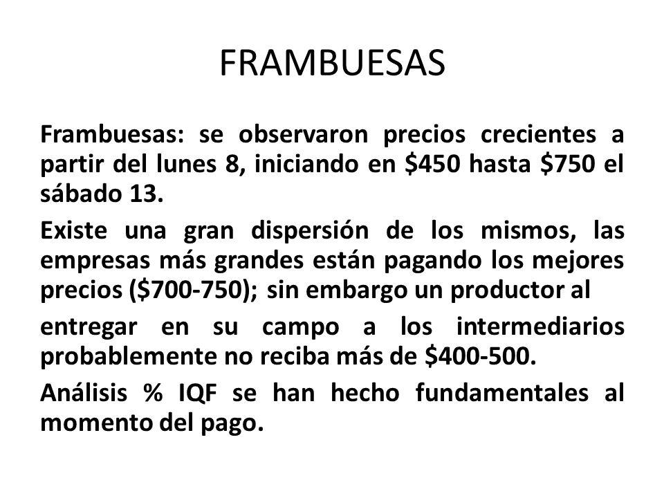 FRAMBUESAS Frambuesas: se observaron precios crecientes a partir del lunes 8, iniciando en $450 hasta $750 el sábado 13. Existe una gran dispersión de