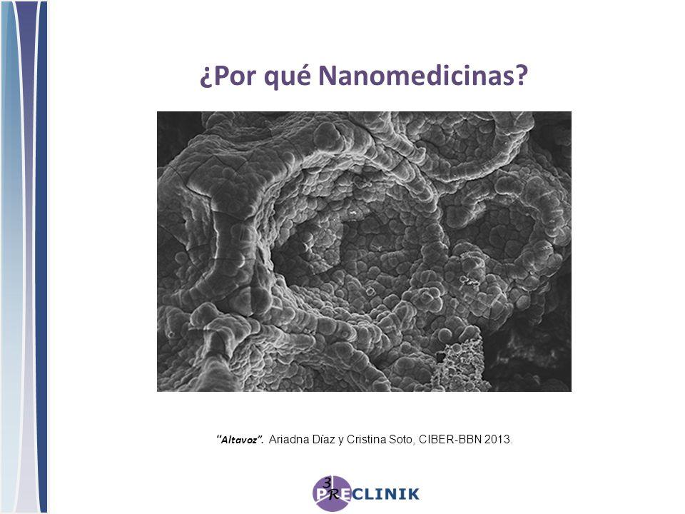 Altavoz. Ariadna Díaz y Cristina Soto, CIBER-BBN 2013. ¿Por qué Nanomedicinas