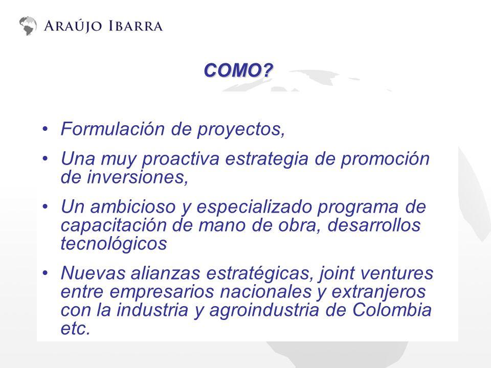 Formulación de proyectos, Una muy proactiva estrategia de promoción de inversiones, Un ambicioso y especializado programa de capacitación de mano de o