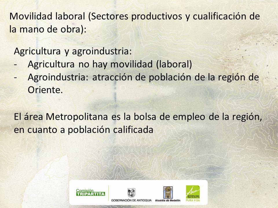 Movilidad laboral (Sectores productivos y cualificación de la mano de obra): Agricultura y agroindustria: -Agricultura no hay movilidad (laboral) -Agr