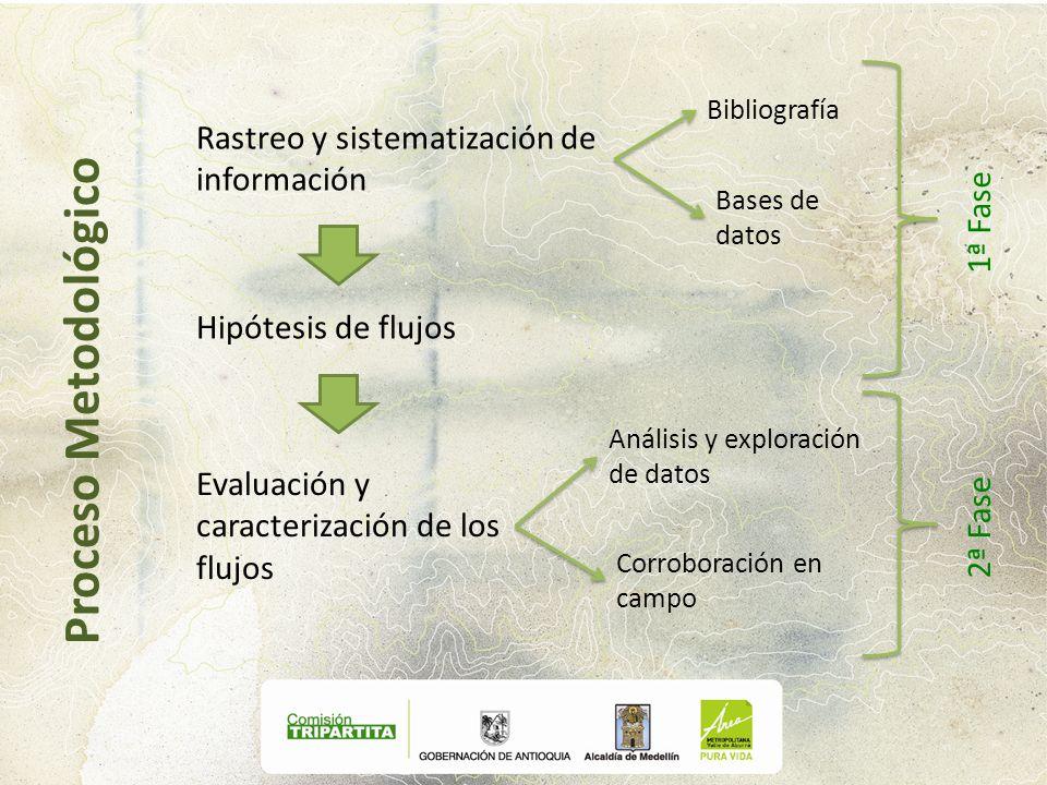 Rastreo y sistematización de información Bibliografía Bases de datos Hipótesis de flujos 1ª Fase Evaluación y caracterización de los flujos Análisis y