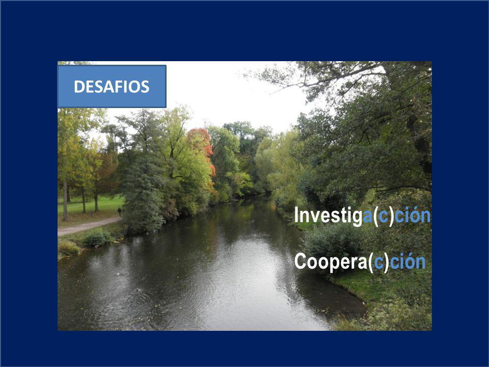 DESAFIOS Investiga(c)ción Coopera(c)ción