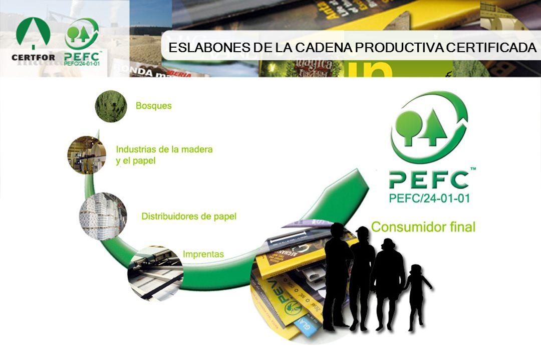 ESLABONES DE LA CADENA PRODUCTIVA CERTIFICADA