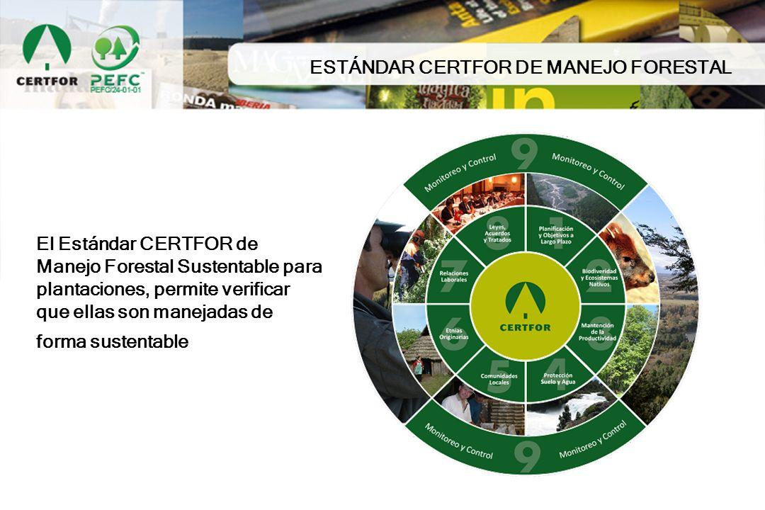 El Estándar CERTFOR de Manejo Forestal Sustentable para plantaciones, permite verificar que ellas son manejadas de forma sustentable ESTÁNDAR CERTFOR