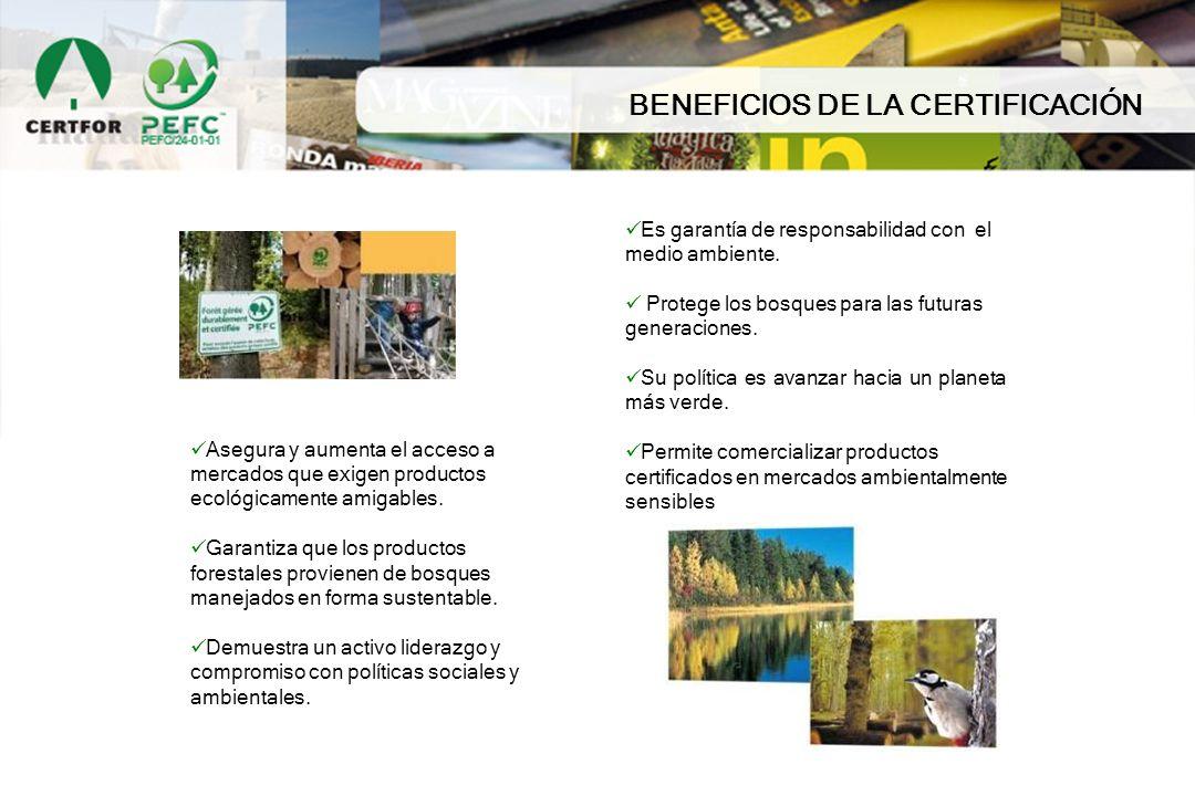 Es garantía de responsabilidad con el medio ambiente. Protege los bosques para las futuras generaciones. Su política es avanzar hacia un planeta más v