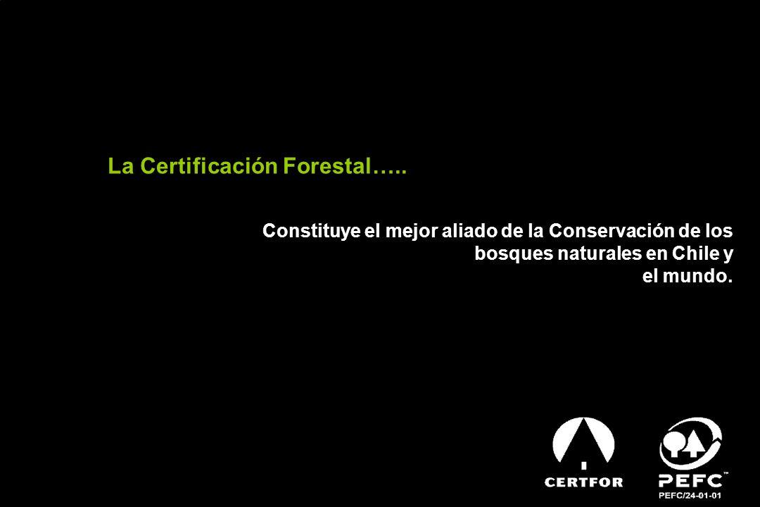 La Certificación Forestal….. Constituye el mejor aliado de la Conservación de los bosques naturales en Chile y el mundo.