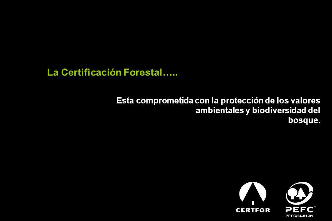 La Certificación Forestal….. Esta comprometida con la protección de los valores ambientales y biodiversidad del bosque.