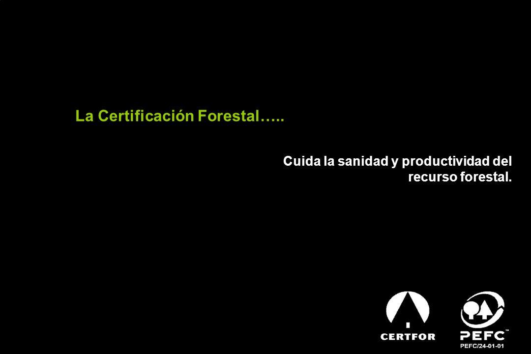 Preparado por Secretaria Técnica CERTFORCHILE SISTEMA DE CERTIFICACIÓN CERTFOR/PEFC PROMOVIENDO EL MANEJO FORESTAL SUSTENTABLE