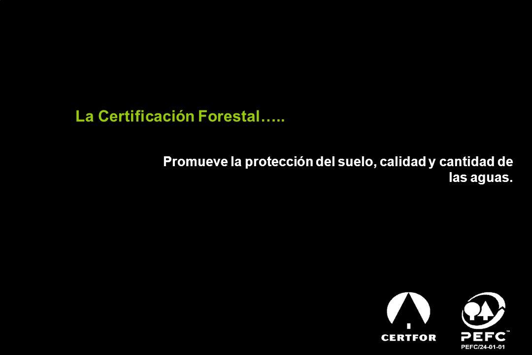La Certificación Forestal….. Promueve la protección del suelo, calidad y cantidad de las aguas.