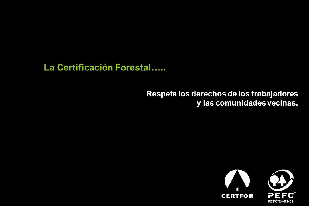 SISTEMA CHILENO DE CERTIFICACIÓN CERTFOR Es el sistema de Certificación Forestal Chileno, homologado internacionalmente por PEFC en Octubre 2004.