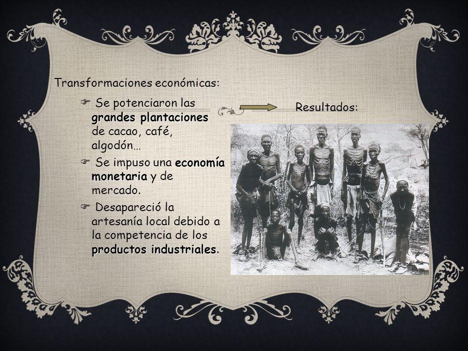 Transformaciones económicas: grandes plantaciones Se potenciaron las grandes plantaciones de cacao, café, algodón… economía monetaria Se impuso una ec