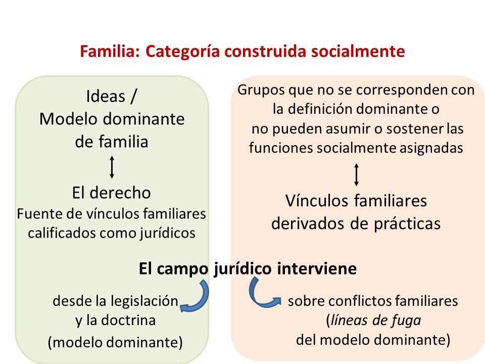 Vínculos familiares derivados de prácticas El campo jurídico interviene Familia: Categoría construida socialmente Ideas / Modelo dominante de familia