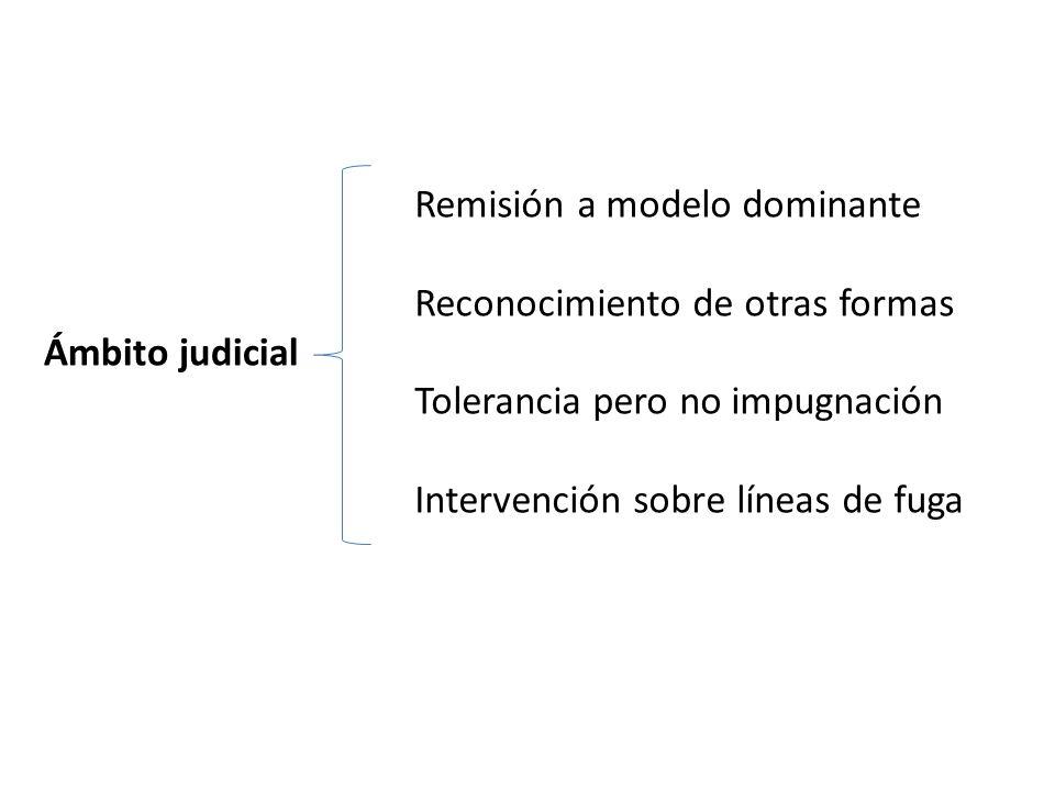 Remisión a modelo dominante Reconocimiento de otras formas Tolerancia pero no impugnación Intervención sobre líneas de fuga Ámbito judicial