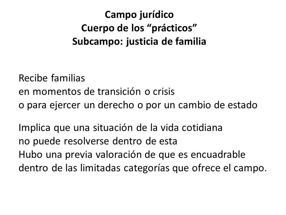 Campo jurídico Cuerpo de los prácticos Subcampo: justicia de familia Recibe familias en momentos de transición o crisis o para ejercer un derecho o po