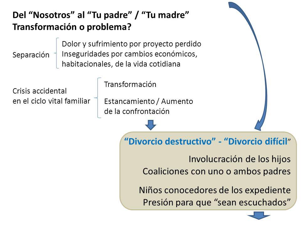 Del Nosotros al Tu padre / Tu madre Transformación o problema? Separación Crisis accidental en el ciclo vital familiar Divorcio destructivo - Divorcio