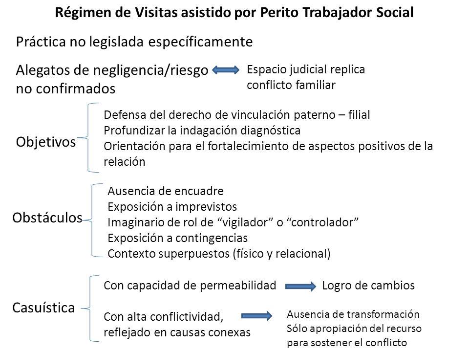 Régimen de Visitas asistido por Perito Trabajador Social Práctica no legislada específicamente Alegatos de negligencia/riesgo no confirmados Objetivos