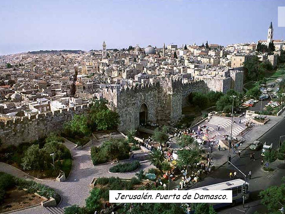 13 Como ya estaba próxima la fiesta judía de la pascua, Jesús fue a Jerusalén. Templo de Jerusalén