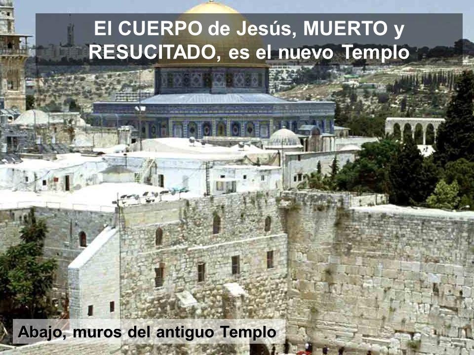 Cima por donde Jesús entró en Jerusalén