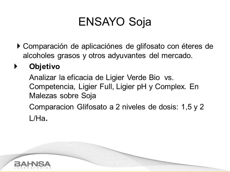 ENSAYO Soja Comparación de aplicaciónes de glifosato con éteres de alcoholes grasos y otros adyuvantes del mercado. Objetivo Analizar la eficacia de L