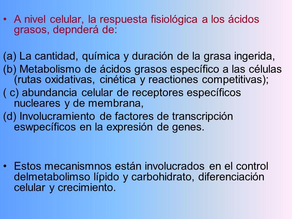 A nivel celular, la respuesta fisiológica a los ácidos grasos, depnderá de: (a) La cantidad, química y duración de la grasa ingerida, (b) Metabolismo