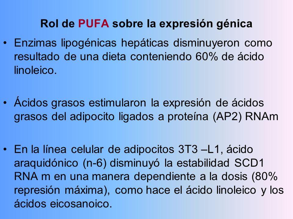 Rol de PUFA sobre la expresión génica Enzimas lipogénicas hepáticas disminuyeron como resultado de una dieta conteniendo 60% de ácido linoleico. Ácido
