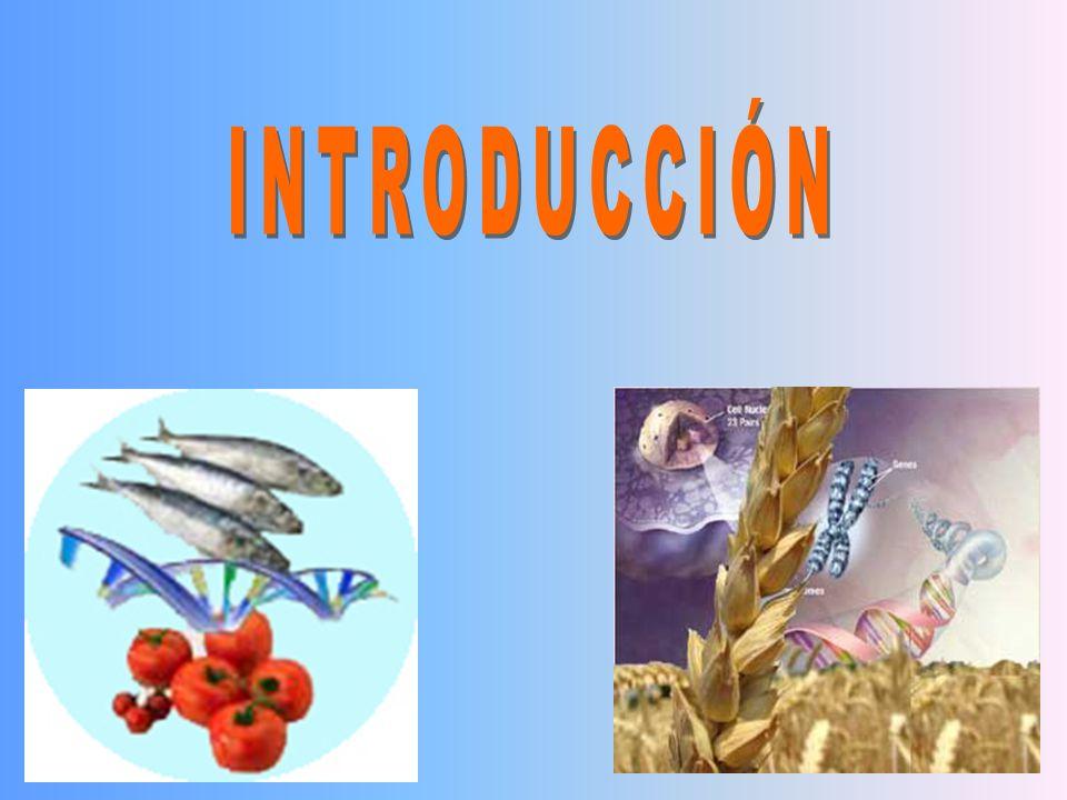 La expresión genética en respuesta a los cambios en el status nutricional es una de los eventos bien establecidos en Procariotes.