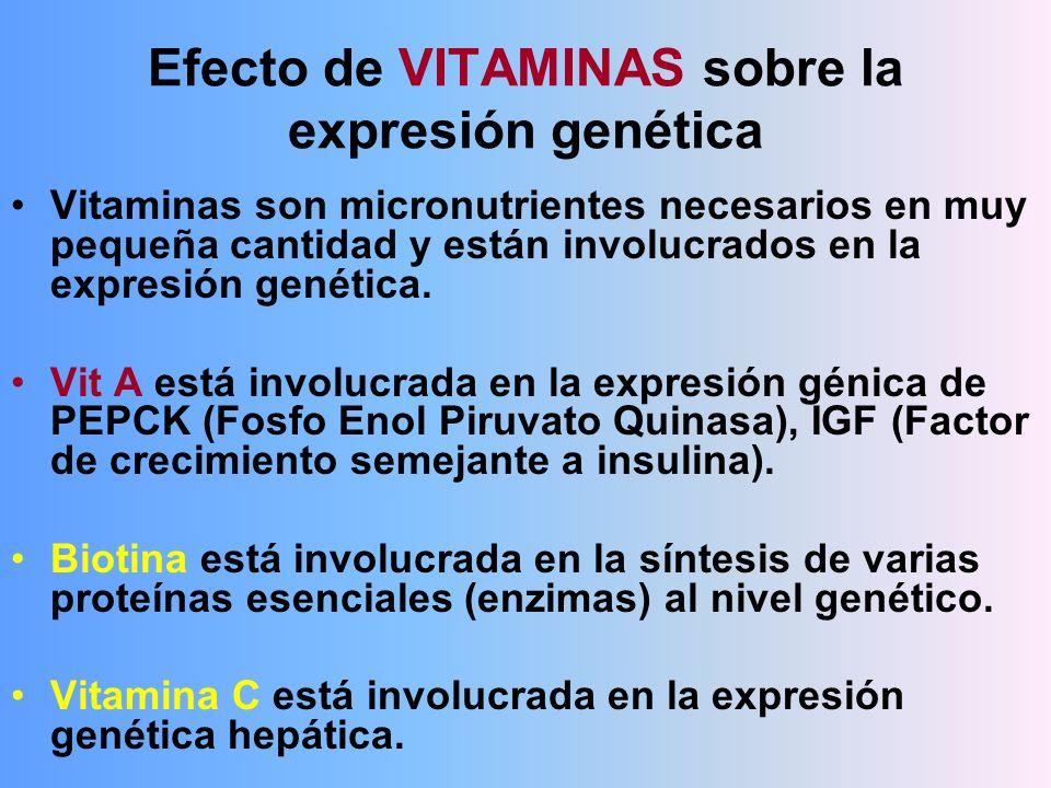 Efecto de VITAMINAS sobre la expresión genética Vitaminas son micronutrientes necesarios en muy pequeña cantidad y están involucrados en la expresión