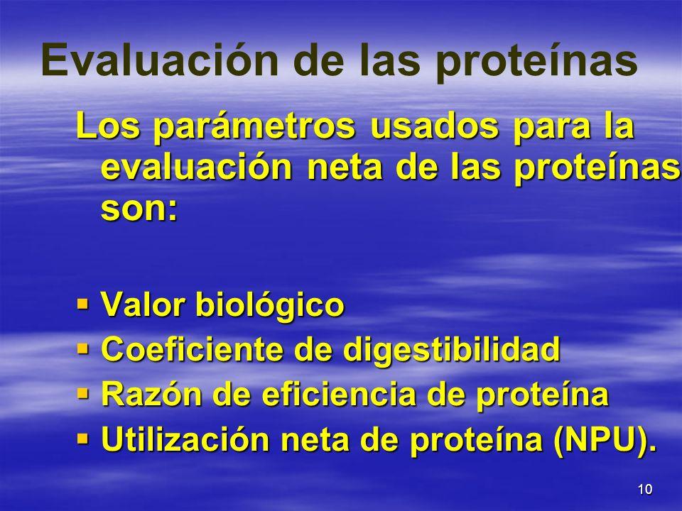 10 Evaluación de las proteínas Los parámetros usados para la evaluación neta de las proteínas son: Valor biológico Valor biológico Coeficiente de dige