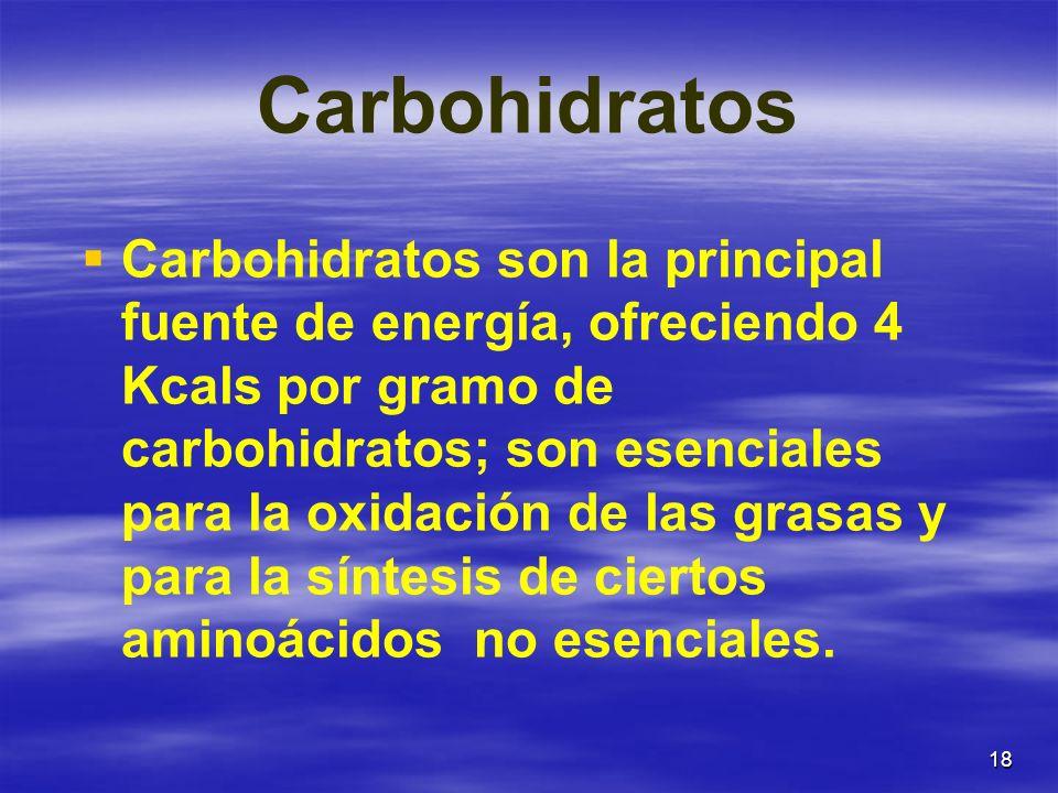 18 Carbohidratos Carbohidratos son la principal fuente de energía, ofreciendo 4 Kcals por gramo de carbohidratos; son esenciales para la oxidación de