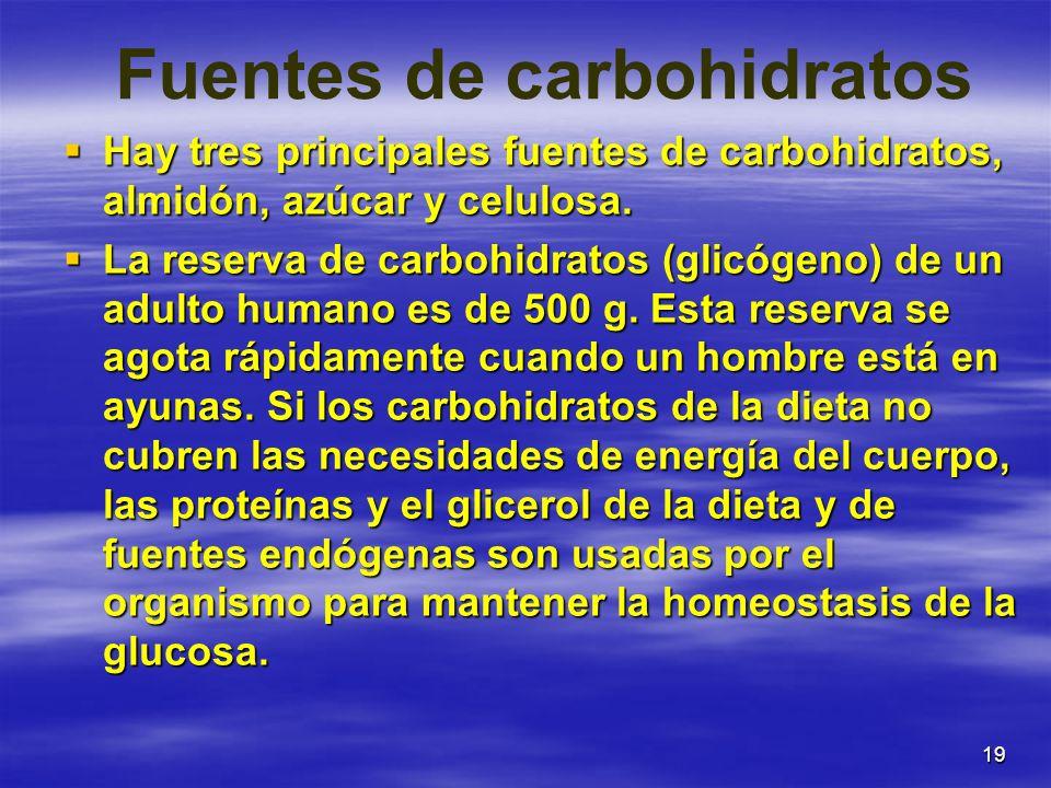 19 Fuentes de carbohidratos Hay tres principales fuentes de carbohidratos, almidón, azúcar y celulosa. Hay tres principales fuentes de carbohidratos,