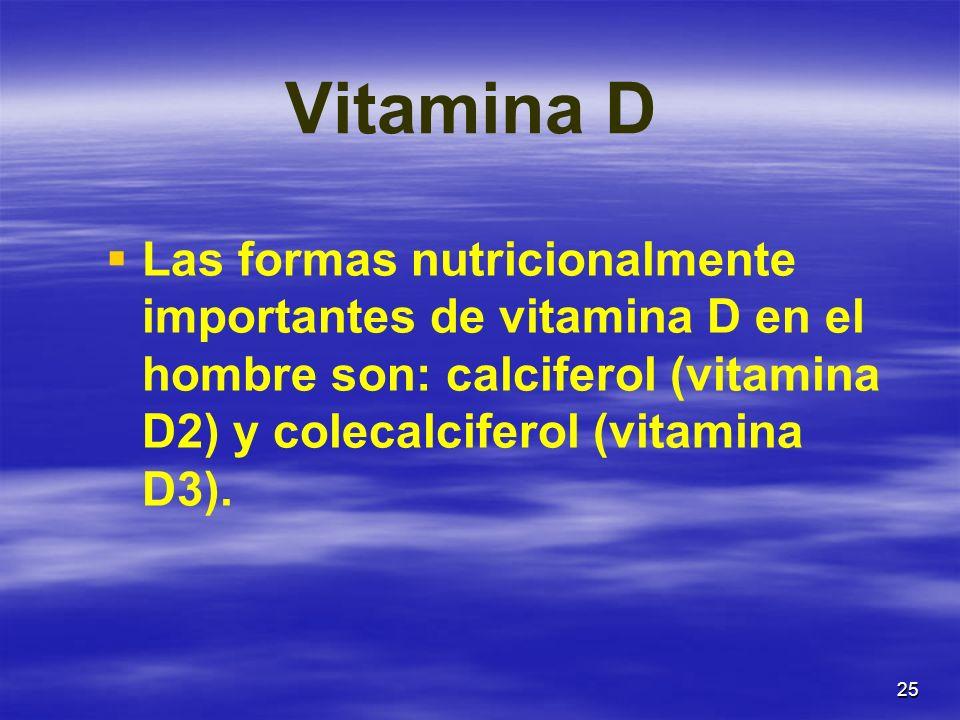 25 Vitamina D Las formas nutricionalmente importantes de vitamina D en el hombre son: calciferol (vitamina D2) y colecalciferol (vitamina D3).