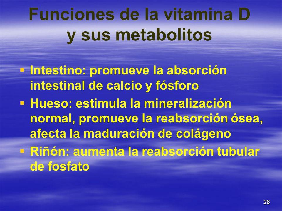 26 Funciones de la vitamina D y sus metabolitos Intestino: promueve la absorción intestinal de calcio y fósforo Hueso: estimula la mineralización norm