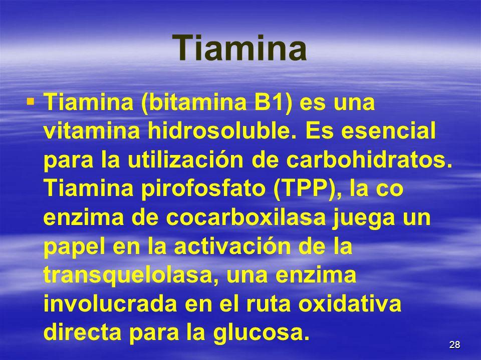 28 Tiamina Tiamina (bitamina B1) es una vitamina hidrosoluble. Es esencial para la utilización de carbohidratos. Tiamina pirofosfato (TPP), la co enzi