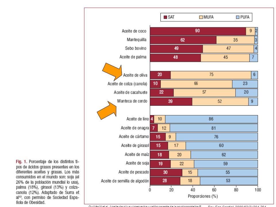 Guillén N et al. Aceite de oliva virgen extra y ratón carente de la apolipoproteína E Rev Esp Cardiol. 2009;62(3):294-304