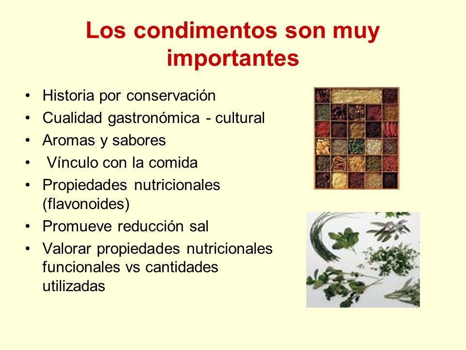 Los condimentos son muy importantes Historia por conservación Cualidad gastronómica - cultural Aromas y sabores Vínculo con la comida Propiedades nutr