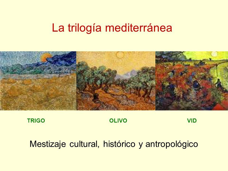 TRIGOOLIVOVID La trilogía mediterránea Mestizaje cultural, histórico y antropológico
