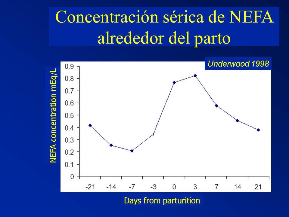 EFECTO DE LA HISTORIA NUTRICIONAL SOBRE LA PRODUCCION DE LECHE 1ra lac2da lac3ra lac4ta lac Efecto Residual M M B A A B M M kg leche(70 días pos-parto) Nº de lactancia
