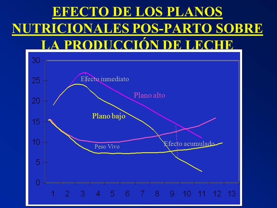 EFECTO DE LOS PLANOS NUTRICIONALES POS-PARTO SOBRE LA PRODUCCIÓN DE LECHE Efecto inmediato Efecto acumulado Plano alto Plano bajo Peso Vivo