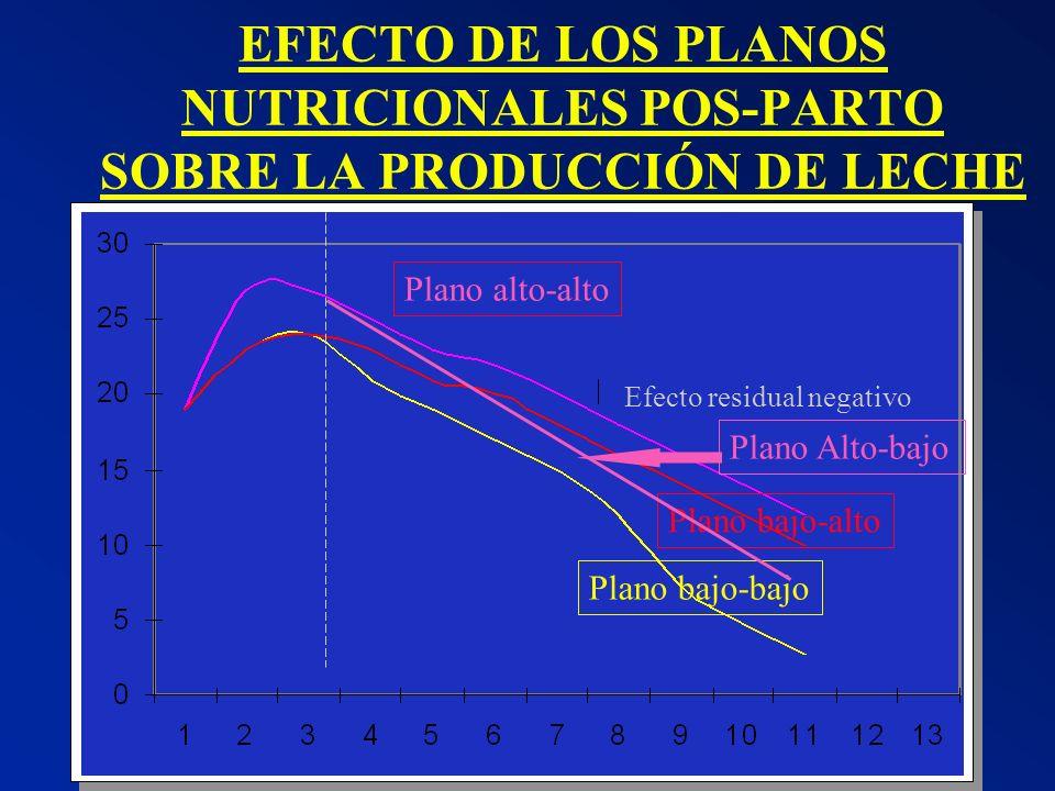 EFECTO DE LOS PLANOS NUTRICIONALES POS-PARTO SOBRE LA PRODUCCIÓN DE LECHE Efecto residual negativo Plano bajo-bajo Plano bajo-alto Plano alto-alto Pla