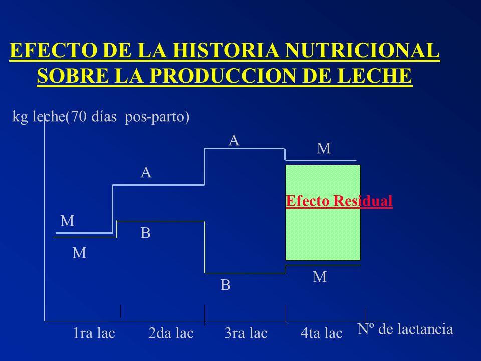 EFECTO DE LA HISTORIA NUTRICIONAL SOBRE LA PRODUCCION DE LECHE 1ra lac2da lac3ra lac4ta lac Efecto Residual M M B A A B M M kg leche(70 días pos-parto