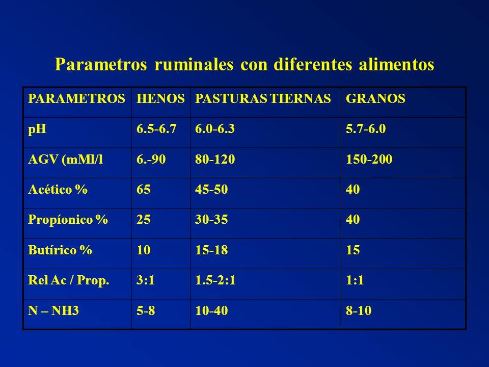 Parametros ruminales con diferentes alimentos PARAMETROSHENOSPASTURAS TIERNASGRANOS pH6.5-6.76.0-6.35.7-6.0 AGV (mMl/l6.-9080-120150-200 Acético %6545