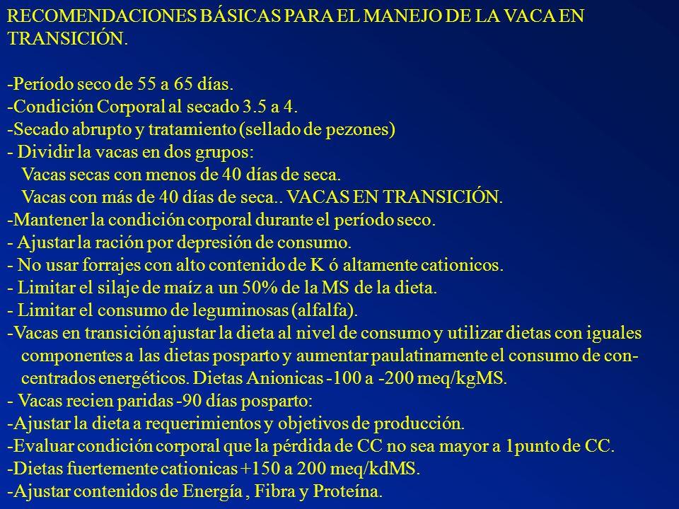 RECOMENDACIONES BÁSICAS PARA EL MANEJO DE LA VACA EN TRANSICIÓN. -Período seco de 55 a 65 días. -Condición Corporal al secado 3.5 a 4. -Secado abrupto